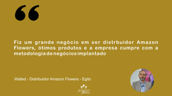 Walled - Distribuidor Amazon Flowers - Egito