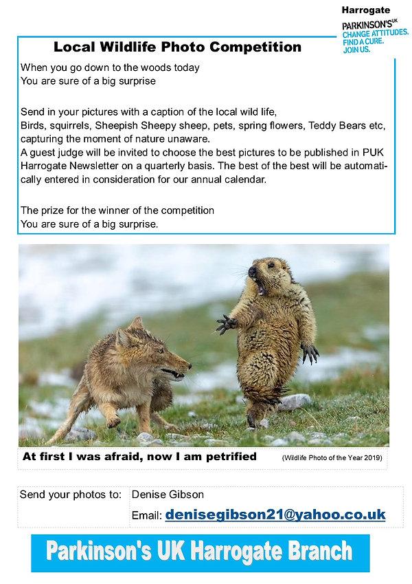 Wildlife photo poster.jpg