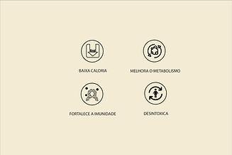 icones mofdificados2-02-02.jpg