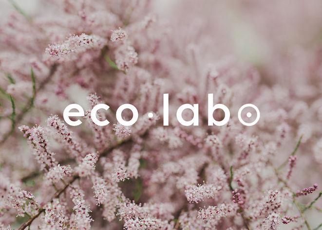 EcoLabo Logo.jpg