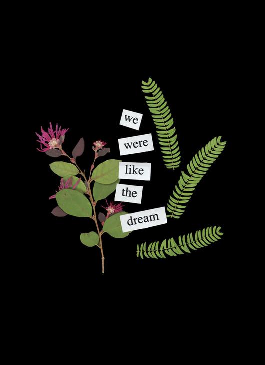 We Were Like The Dream