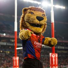 Lions V Stormers_J McMillan -66.jpg