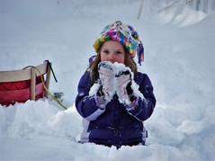 Snow fun in the back yard
