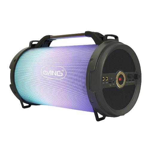 ANG Outdoor/Indoor Wireless Speaker