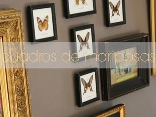 cuadros de mariposas