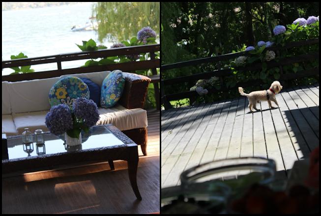 paso a paso funda de frasco a crochet. delicado florero con funda fácil a crochet las del lago