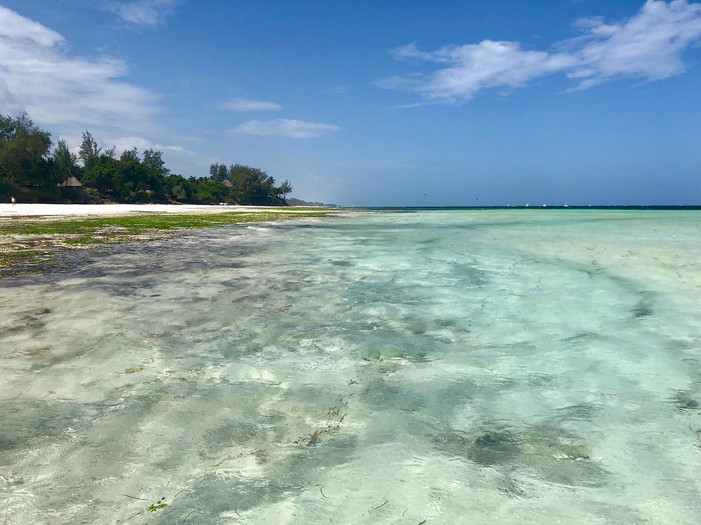 The white sand beaches of Diani in Kenya