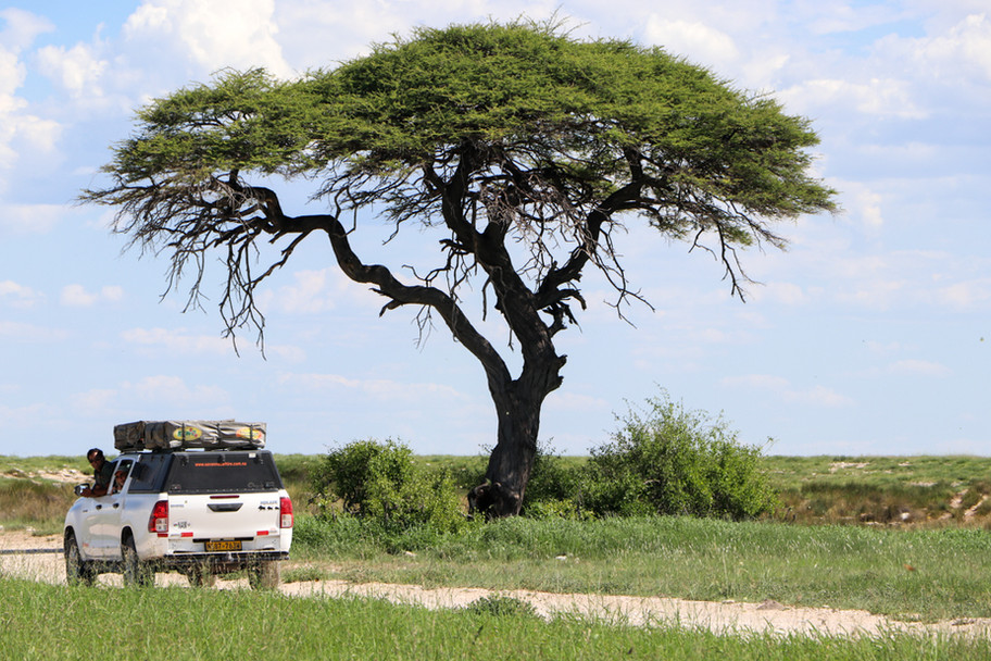 Namibia 4X4 Jeep with roof tent
