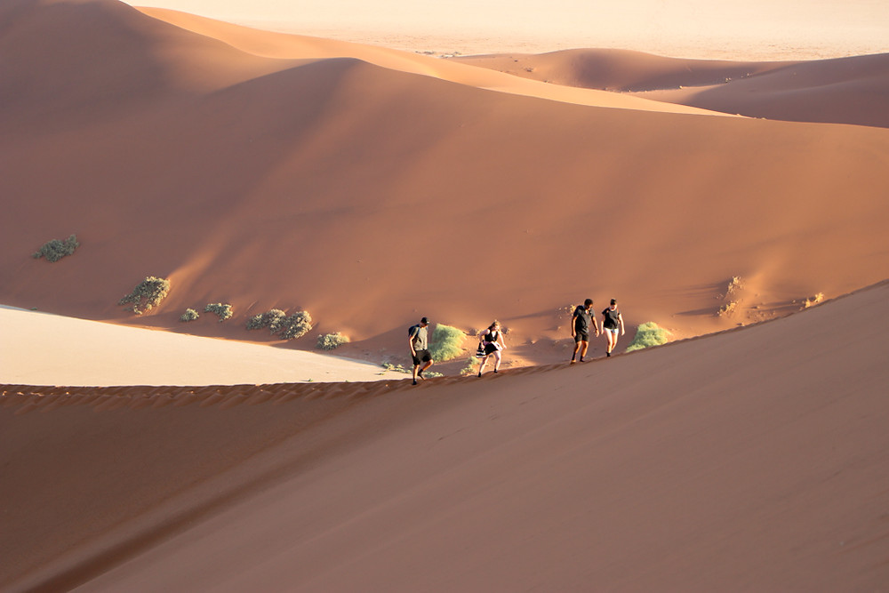 Climbing the big daddy dune is one of the top things to do in Namibia