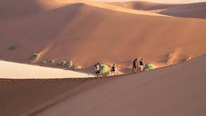 Your Namibia Travel Bucket List: 20 Adventure Things to Do