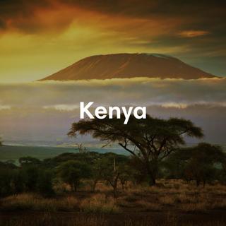 Kenya destination guide