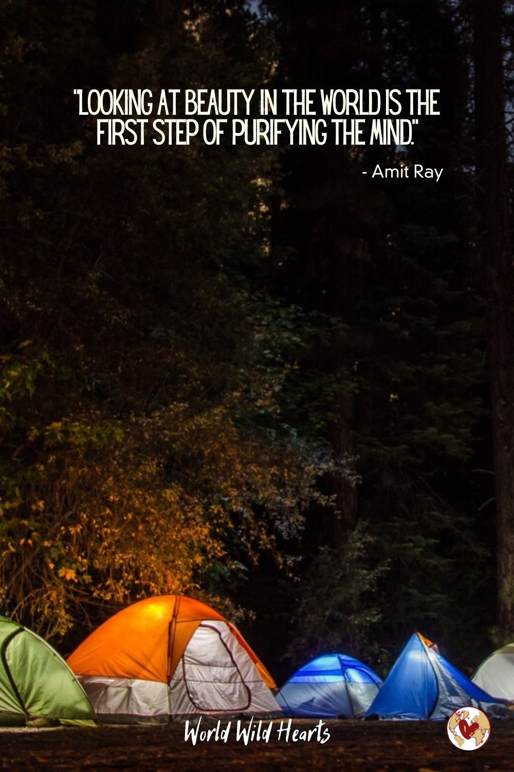 Camping nature quote