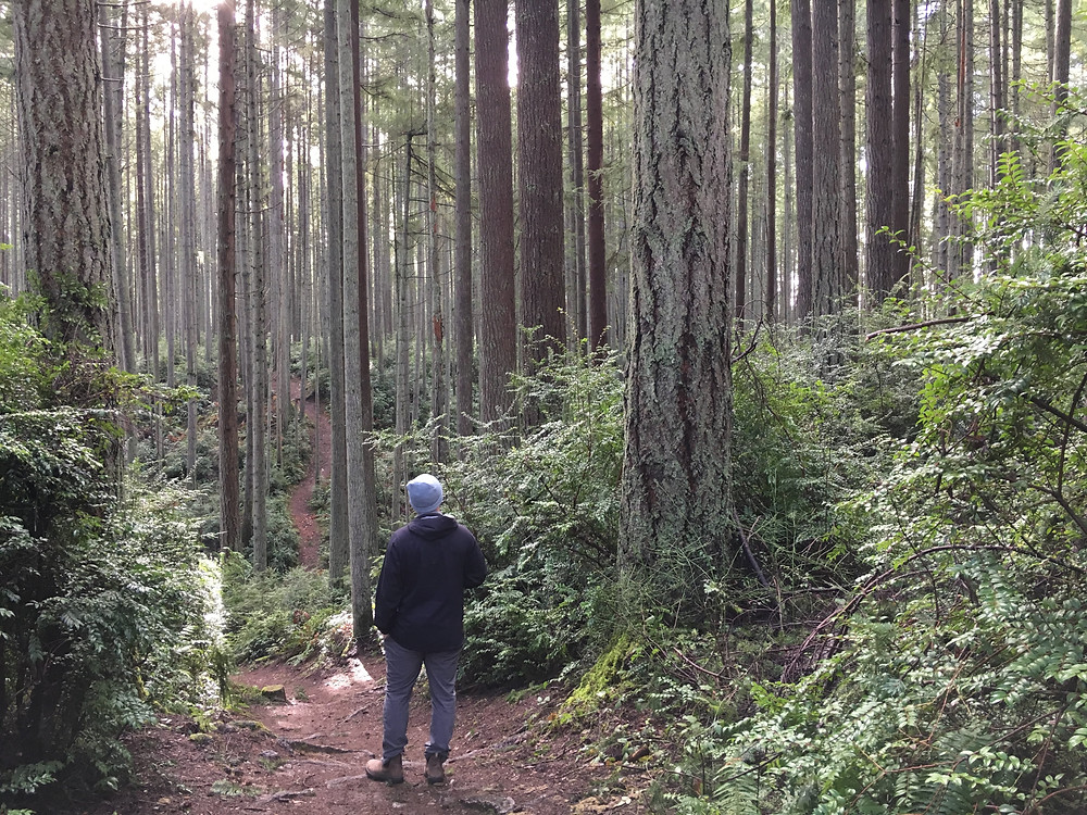 Vashon Island Center Forest Hike