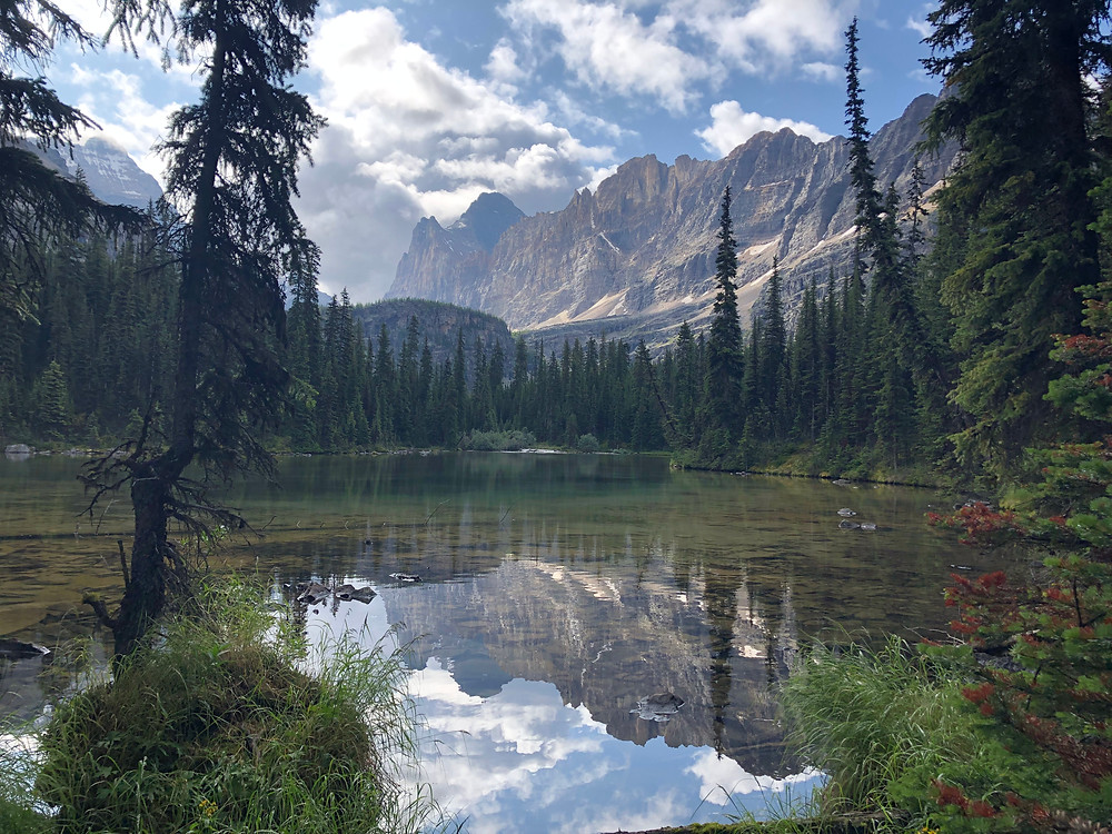 The Shoreline Trail in Lake O'Hara is doable in one day
