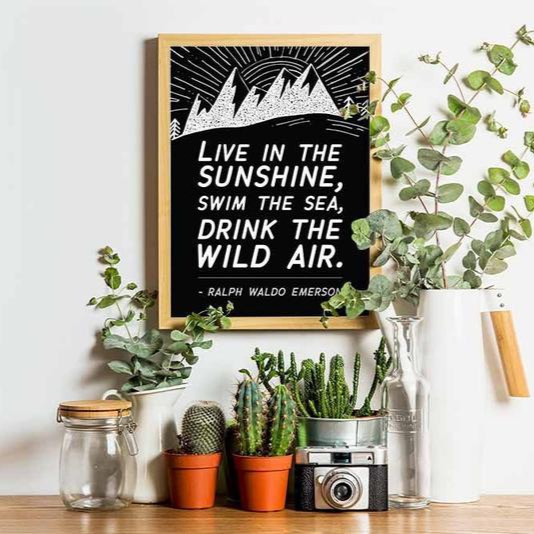 Live in the sunshine nature quote