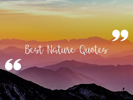The World's Best Nature Quotes