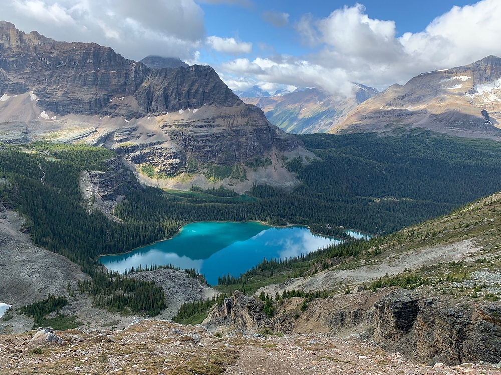 Lake O'Hara Alpine Circuit is one of the best day hikes in Lake O'Hara