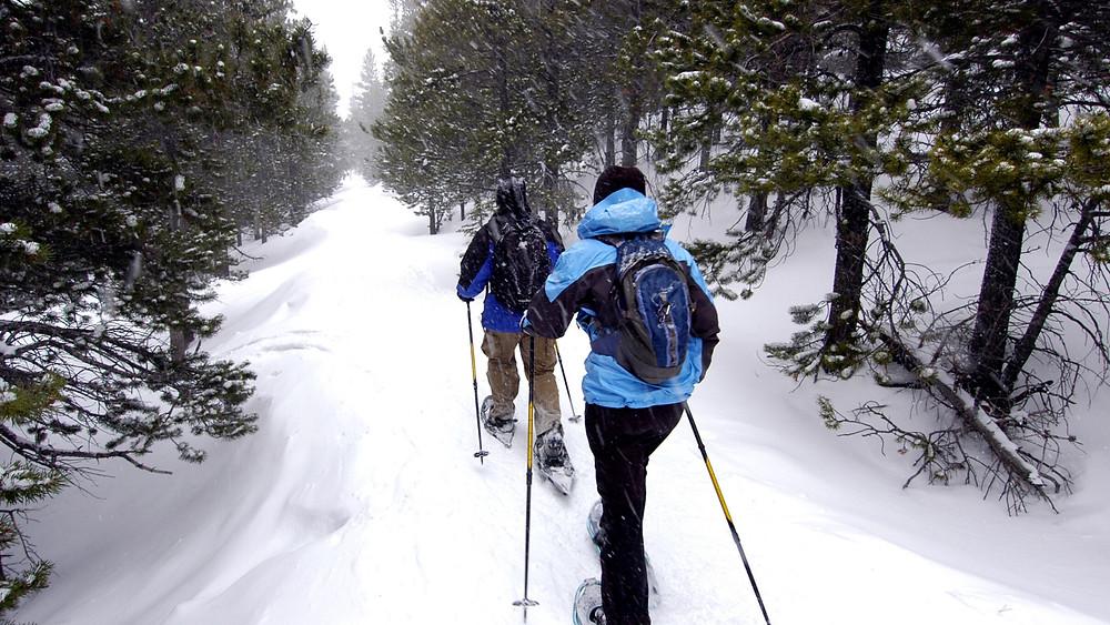 Snowshoe tour banff