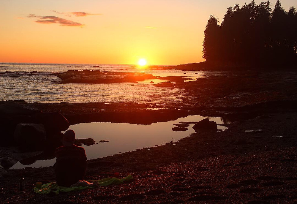 Botanical beach sunset in Port Renfrew