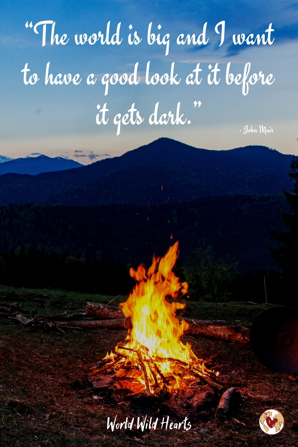 Adventure is out there quote