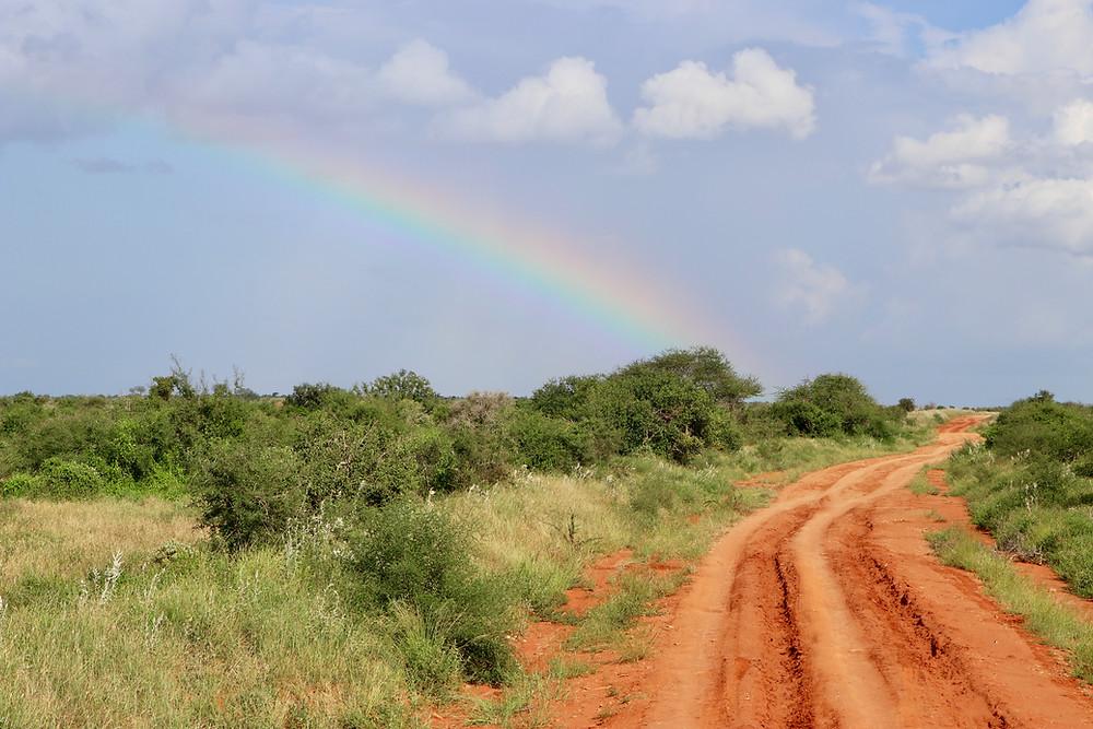 driving tips for Kenya Budget Travel