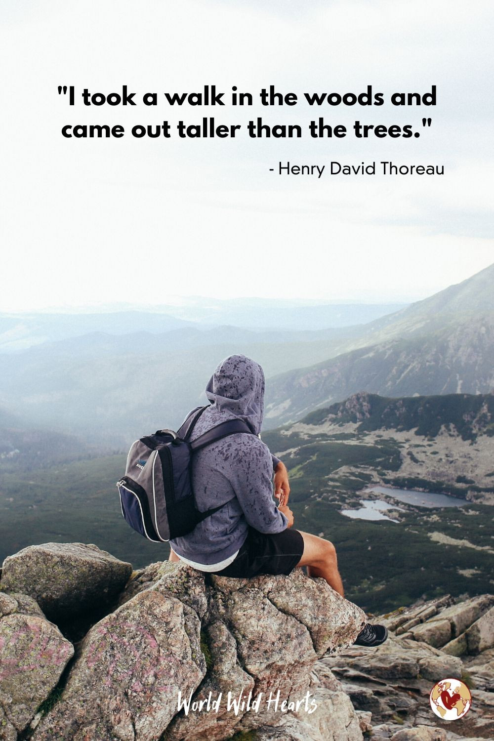 Best nature quote about woods