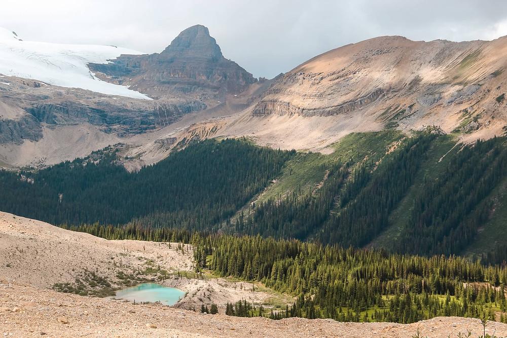 best hikes banff iceline trail