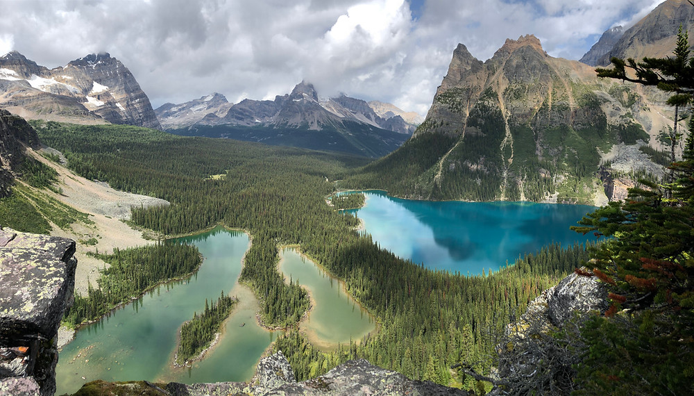 Opabin Prospect viewpoint over Lake O'Hara