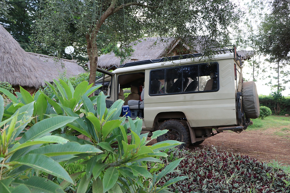 safari jeep to travel in Kenya on a budget