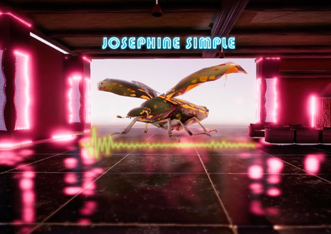 Virtual Queerality - Josephine Simmple
