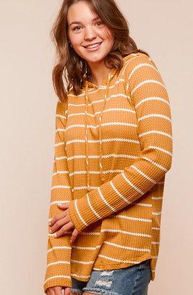 Mustard Stripe Hoodie