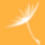 igive app logo.png