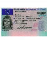 Führerschein_formatiert.JPG