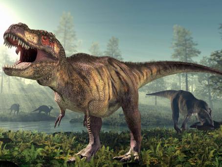Динозавры найдены в Анжеро-Судженске!