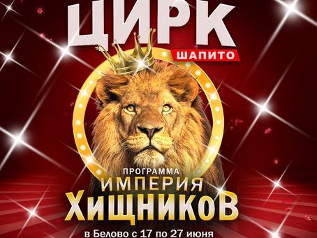 Цирк Шапито Империя хищников в Белово!