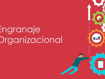 """¿Cómo se dice """"employee engagement"""" en español? Parte 2"""