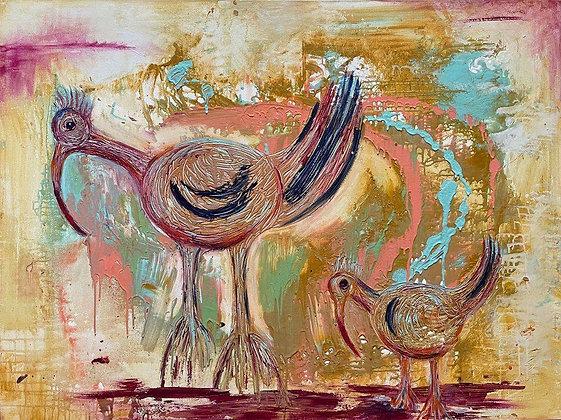 The Love Bird Ibis