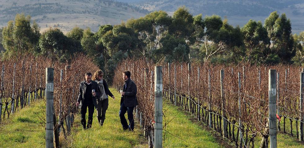 Frogmore-Creek-photo-credit-Wine-Tasmani