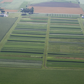 Wisconsin Integrated Cropping Systems Trial (WICST)
