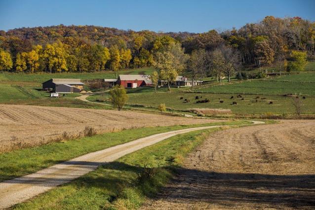 Hillside Pastures Fall.jpg