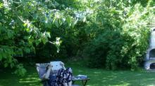 Relaxt im Garten