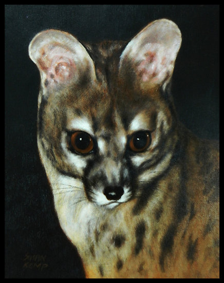 CIVET CAT PORTRAIT, oil on board, by Susan Kemp.