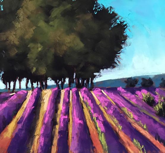 Audacious Lavender #2