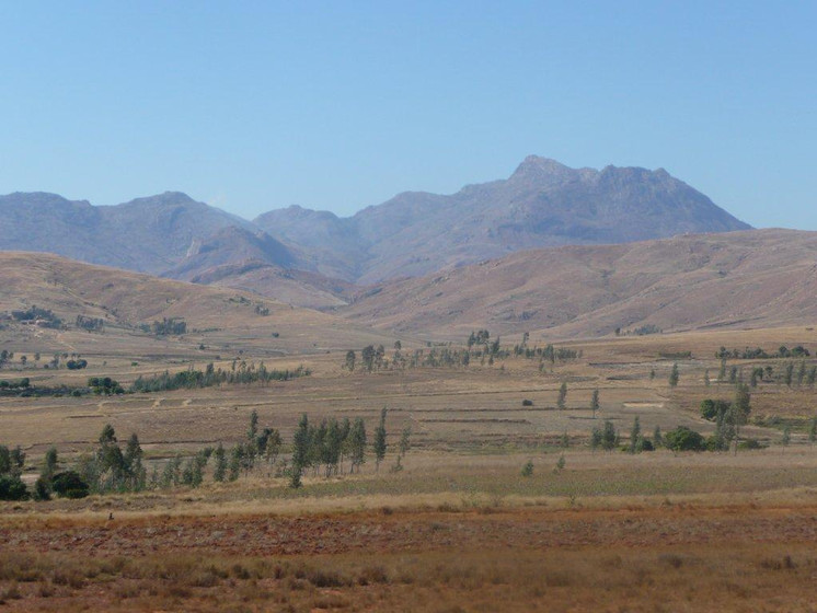Image sur la deforestation.JPG