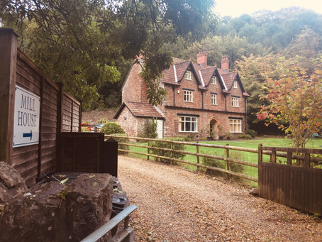The Mill House B&B, Three Months On...