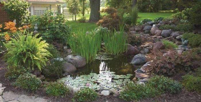 Small Professional Pond Kit (8'x11')