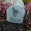 Thumbnail: Natural River Rock Horse Memorial