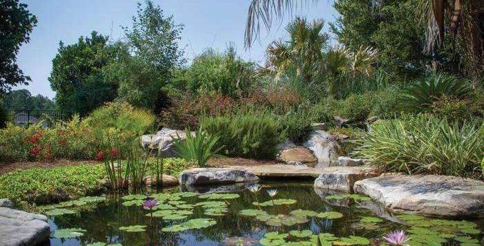 Large Professional Pond Kit (21' x 26')