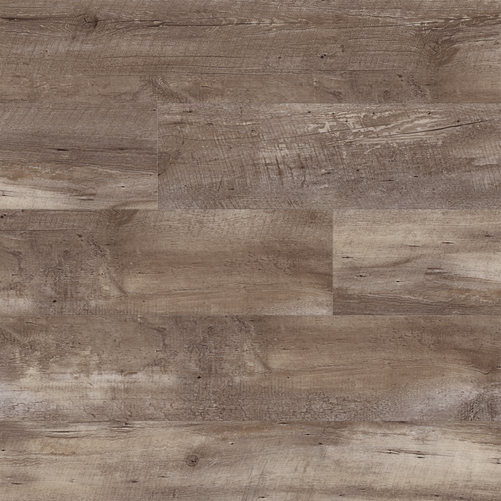 Timber Bark