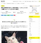 家族と獣医師が協力して猫を笑顔に!【キャットリボン運動 1stイベント@